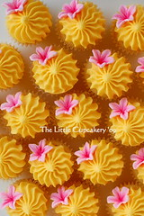 Princess flower cupcakes (TheLittleCupcakery) Tags: birthday pink tiara yellow cake purple princess little blossom mini crown anya tlc fondant cupcakery xirj klairescupcakes
