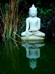 Reflect - Self - Reflect (Kausthub) Tags: chile reflection green water grass leaves statue stone digital buddha handheld fujifilm marble spirituality 2009 soe pointshoot flickrsbest finepixf420 platinumphoto colorphotoaward diamondclassphotographer theunforgettablepictures theperfectphotographer rubyphotographer