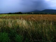 Before Storm (ki) Tags: storm nature canon landscape countryside cornfield powershot blueribbonwinner bej platinumphoto aplusphoto sx10 goldstaraward absolutelystunningscapes platinumbestshot