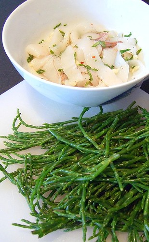 squid and samphire - before