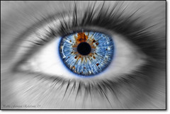 Blue eye (_Hadock_) Tags: blue windows wallpaper detail macro up azul photoshop out de macintosh ojo photo mac nikon foto close screensaver zoom cut osx creative 7 sigma commons des leopard ojos desaturation xp linux vista incredible marron unix fondo f28 escritorio saturado siete ojazos selective zooming pantallas rosepetal desaturate salva 105mm increible walpaper oihana salvapantallas desaturado ojazo d80 selectivo strobist comons sb900 platinumheartaward