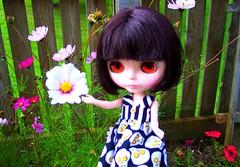 Josephine Jazz exploring Flower Forest