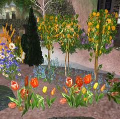 Lunata Lupino in Darkwood Gardens