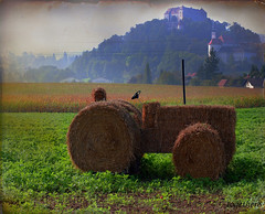 .. farmers creations on explore ;-)) (together8) Tags: fab texture nature austria explore creation sensational farmer tractors kartpostal nikond40 betterthangood qualitypixels saariysqualitypictures together8 imagesforthelittleprince