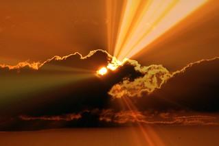 i seeeee the light