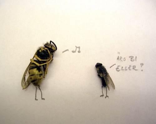 dead-flies-art-7
