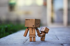 走嘛!! (sⓘndy°) Tags: sanfrancisco toy toys box figure figurine sindy kaiyodo yotsuba danbo revoltech danboard 紙箱人 阿楞 amazoncomjp