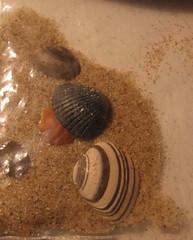 zakje zand en schelpen