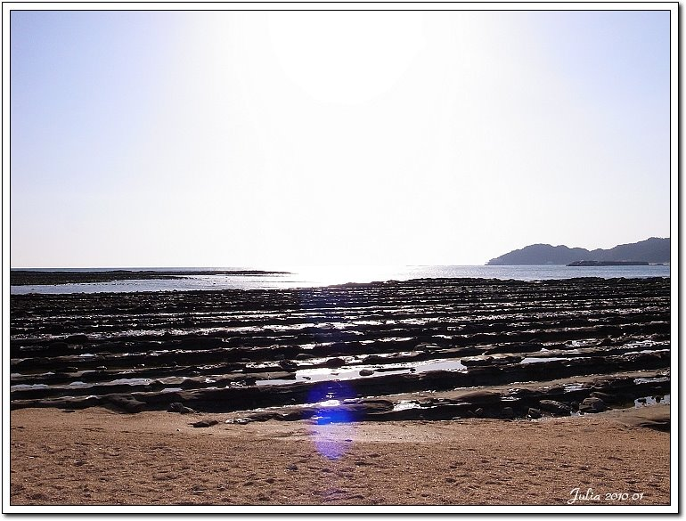 青島海岸 (14)