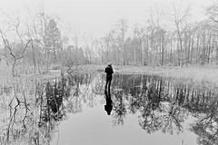 (JonathanPuntervold) Tags: winter bw mist lake reflection ice standing forest frozen frost martin 1022mm gribskov rågeleje cotcpersonalfavorite