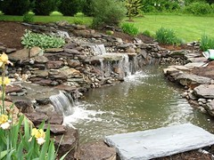 Water Features and Ponds | Masonry Division | Johnsons Landscaping 14 (Johnsons Landscaping Service, Inc) Tags: park lighting county water stone stairs work silver landscape outdoors design dc washington spring md nw exterior northwest gardening landscaping masonry johnson scenic fences plan maryland chevy chase potomac service walkways features montgomery walls kensington takoma decks bethesda ponds silverspring stonewalls takomapark driveways carpentry rockville retaining drainage paver chevychase olney arbors patios plantings trellises retainingwalls exteriorlighting landscapelighting segmental johnsonslandscapingservice incresidentialandcommerciallandscapedesignservicesinwashington montgomerycountyotherservicesgardendesign yarddesigns stepsandwalkways timberwallspatiosstepsandwalkwayspondsgardendesignstonewallsexteriorlightingpruningandtrimmingpaversflagstonewalkwayflagstonepatiodrainageretainingwallsyarddesignslandscapingservicejohnsonlandscapinglandscapedesign