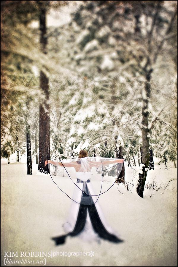 snow unveiled18