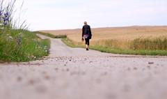 Walking Alone (C_MC_FL) Tags: street woman girl female landscape photography austria sterreich focus alone fotografie dof view angle pov walk ground fujifilm behind frau landschaft idyllic pathway weg waldviertel boden pfad hinten spazieren eggenburg blickwinkel strase landschaftsaufnahmen aplusphoto idylisch s100fs gettyimagessalq1