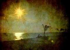 Sunrise over Oak Street Beach, Chicago (Kurlylox1) Tags: light sun lake chicago texture beach water sunrise golden sand path lakemichigan palmtrees tropical rays oakstreetbeach infinestyle memoriesbook