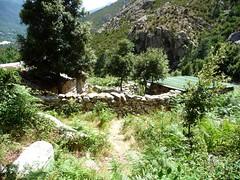 Arrivée aux bergeries de Matone
