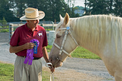 Horse Portfolio-11 (Almost Sooted) Tags: county horses horse howard sony fair portfolio 2009 draft alpha700