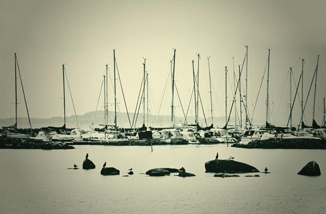 Enens hamn