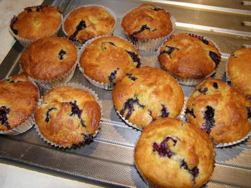 blueberry muffins ala elise