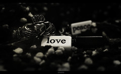 Peace, love, the only thing left is (KMRM Photography) Tags: blackandwhite bw white black love field happy photography idea focus dof bokeh happiness ideas depth peave kmrm kmrmphotography