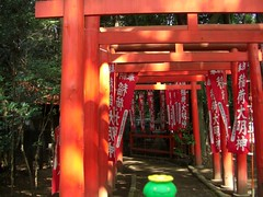 Skiploom in Mito, Ibaraki 25 (Tokiwa shrine) (Kasadera) Tags: toys figure pokemon mito  tokiwashrine skiploom    floravol hubelupf
