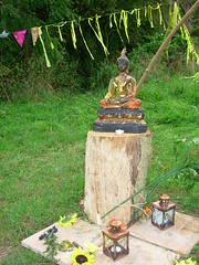 Buddhafield East yellow Buddha shrine