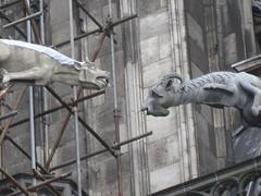 Dueling gargoyles (Accidental Hedonist) Tags: germany cathedral cologne kln gargoyle koln klnerdom colognecathedral hohedomkirchestpeterundmaria shufflesaver seenonflickr germanybelgiumtrip