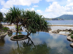 fountain of youth (kumo_no_ue) Tags: travel spring philippines batanes