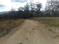Rail Trail (4)