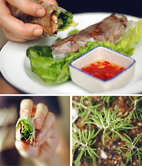 (thundered cat) Tags: vietnamese mint pork rosemary basil rolls lemongrass fishsauce chilies