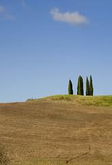 Standing alone (Eva Vujacic Immagine Photo) Tags: italy color italia autum paisaje tuscany soledad toscana sabado arezzo cipreses diamondclassphotographer evavujacic wwwimmaginephotographycom