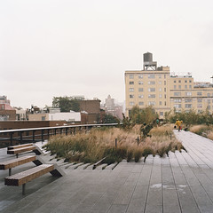 A view along New York's High Line Linear Park (peterlfrench) Tags: park nyc newyorkcity urban newyork color green fall 6x6 film rollei rolleiflex mediumformat october kodak government urbanism portra 2009 highline 220 reclaimed redevelopment urbanpark linearpark 400vc thehighline peterfrench primelens urbangreenspace zeissplanar murb rolleiflexslx 80mmlens pfrench99 plnz livingurbanism newyorkshighline pf2298s10017
