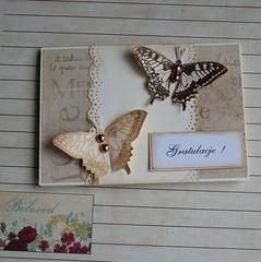 gratulacje motylki