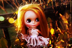 Embracing the last of the golden leaves. (rockymountainroz) Tags: limitededition cwc rbl takaratomy doubledee neoblythe doronjoxblythe cct7yearitchdressfromginasshop