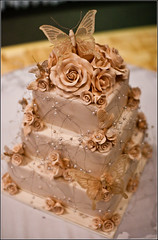 butterfly wedding cake (liipgloss) Tags: wedding cake groom bride pageboy