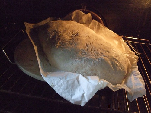 raw ciabatta bread on baking paper on a pizza stone, in the oven, about to bake