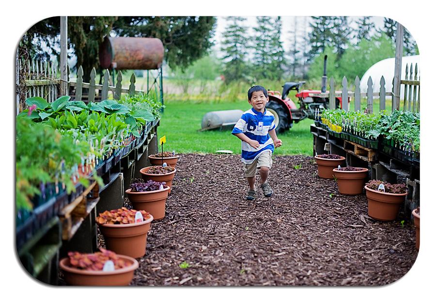 Flower farm 8
