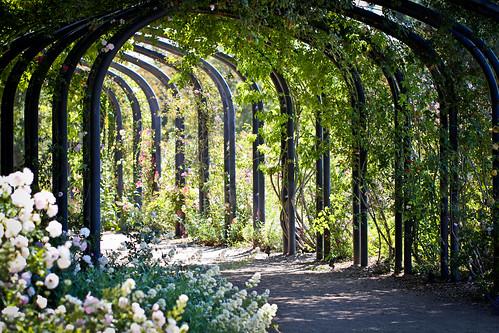Descanso Gardens - May 27, 2011