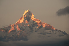 Fishtail, holy mountain (teocaramel) Tags: nepal mountain montagne holy himalaya soe nepali fishtail npal supershot sacre mywinner abigfave favemegroup4 favemegroup6 diamondclassphotographer betterthangood