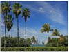 city of palms... (iCamPix.Net) Tags: florida miami postcard explore golfcourse fav favourite canonef2470mmf28lusm mostviewed golfclub downtownmiami 5906 miamidadecounty crandonpark keybiscaye mostwatched cannoneos1dsmarkiii icampixtechnologyleveli crandonparkgolfclub