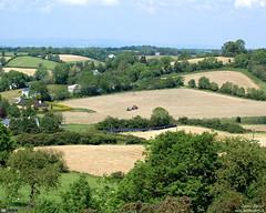 Summer in Cavan (4:3) (bbusschots) Tags: ireland summer wallpaper tractor field countryside farmland cavan ulster drumlin wallpaper43