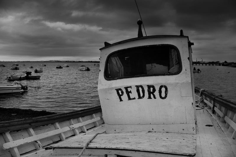 162 _MG_3007 - Pedro