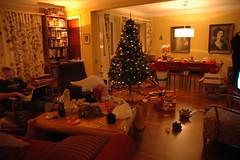 Lazy Christmas day (Radjibel) Tags: sam tré jól kerti trausti kósí