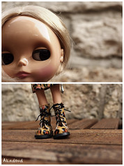 *Dolly Diptych Weekly* 6/52
