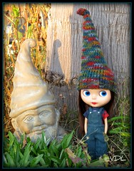 The Gnomes!