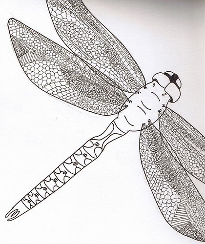 Dragonfly Drawing Images. Dragonfly Drawing