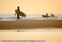 IMG_5915 (Dhammika Heenpella / Images of Sri Lanka) Tags: sea vacation people holiday man tourism beach sport fun happy coast aqua asia surf waves village calendar surfer board contest competition surfing tourists coastal shore enjoy surfboard getty surfers srilanka southeast watersports activity visitors lk uva foreigners enjoying fishingvillage holidaying arugambay pottuvil placeofinterest potuvil uvaprovince surfingpoint dhammikaheenpella potuwil theimagesofsrilanka heenpalla visitsrilanka2011