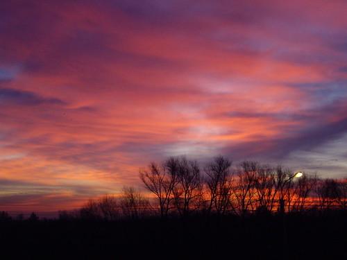 Siberian morning