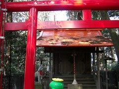 Skiploom in Mito, Ibaraki 26 (Tokiwa shrine) (Kasadera) Tags: toys figure pokemon mito  tokiwashrine skiploom    floravol hubelupf