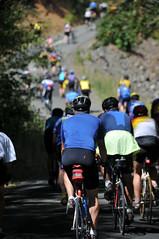Cycle Oregon Day 3 - Happy Camp to Lake Selmac-50