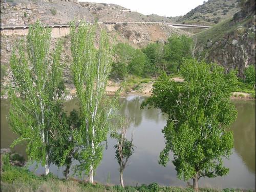 Desembocadura del arooyo de la Degollada en el Tajo  hacia 2008